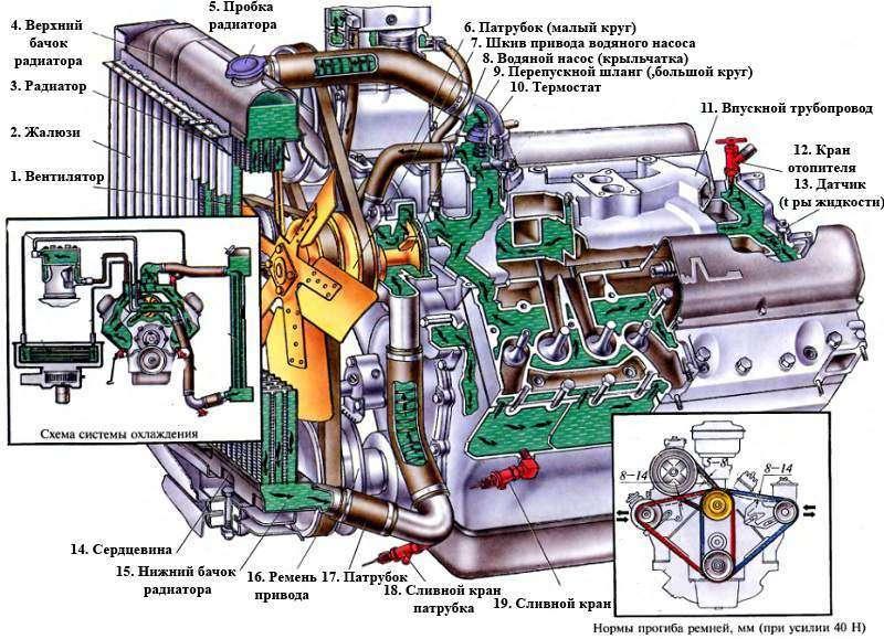 мире термостат на камазе ггэ наход Woolpower используется